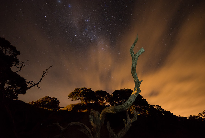 Frankieboy Photography |  Army Bay Beach At Night | New Zealand