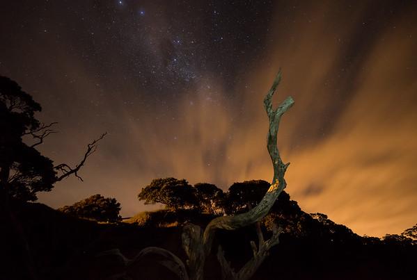 Frankieboy Photography    Army Bay Beach At Night   New Zealand