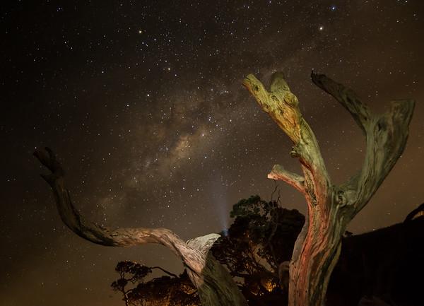Frankieboy Photography    Army Bay At Night   Whangaparaoa New Zealand