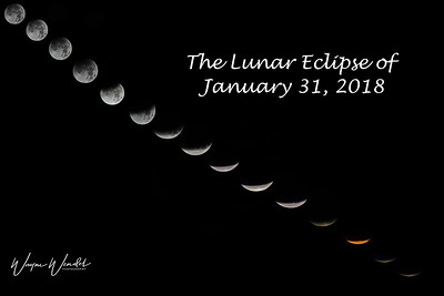 Lunar Eclipse of January 31, 2018