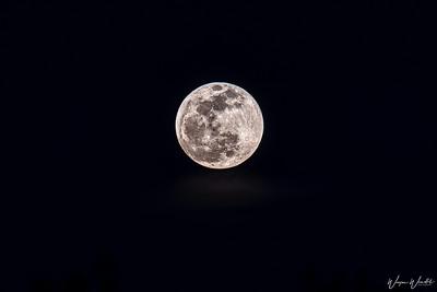 20190120_Lunar_Eclipse_D500&200-500mm_Lens_at 500mm_2705