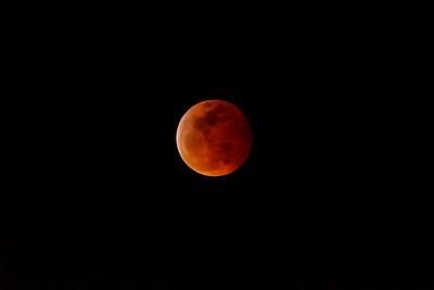 20190120_Lunar_Eclipse_D500&200-500mm_Lens_at 500mm_2835