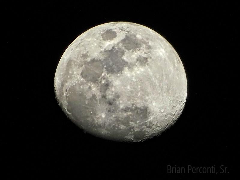 Moon, Tampa Florida