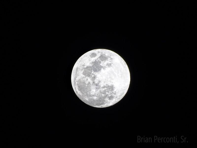 Moon, Tampa, Florida