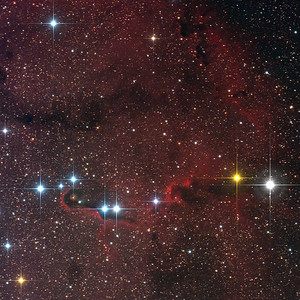 The Trunk Nebula vdB142 in Cepheus