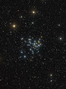 Stars in Perseus