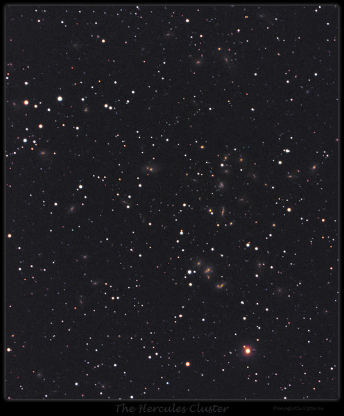 The Hercules Galaxy Cluster