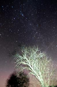 Andromeda-Gebiet