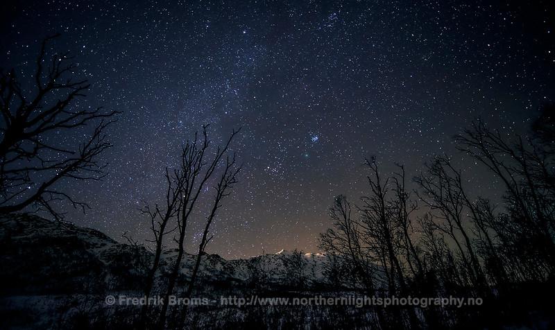 Comet 46P Wirtanen - Widefield