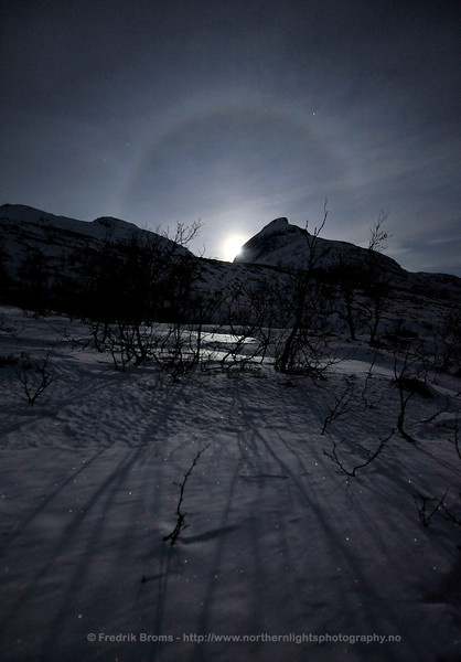 Moon Halo over Winter Landscape
