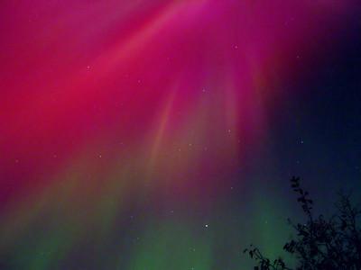 Aurora Borealis from Ashburn (3 of 3)