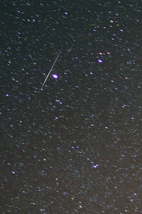 2010 Geminids peak night (December 13/14, 2010) at Deerlick Astronomy Village (DAV) in Georgia (U.S.A.)  Another single 1 minute exposure, taken with the Canon 300D at ISO800 and Canon 24mm f/1.4 mkII lens shows a bright Geminid passing near the star Procyon.  The fainter streak is probably a passing satellite.
