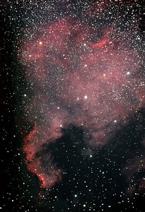 "The ""North America Nebula"" (NGC7000) named after it's shape. This lies around 2500 light years away from the earth, in the Milky Way, near the star ""Deneb"". The colour is an interstellar cloud of ionizer hydrogen. This was an image taken with a modified camera on the back of a telescope I own. A total of 1 hour 3 minutes exposure time."