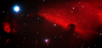 "The Horsehead Nebula, made famous by some stunning images taken from the Hubble Space Telescope. This is a small dark nebula that is silhouetted against the glow of the emission nebula IC434. This nebula is found just south of the leftmost star in Orion's belt and is around 1600 lightyears away from the earth. Taken with a modified Canon 450D and 8"" SCT scope."