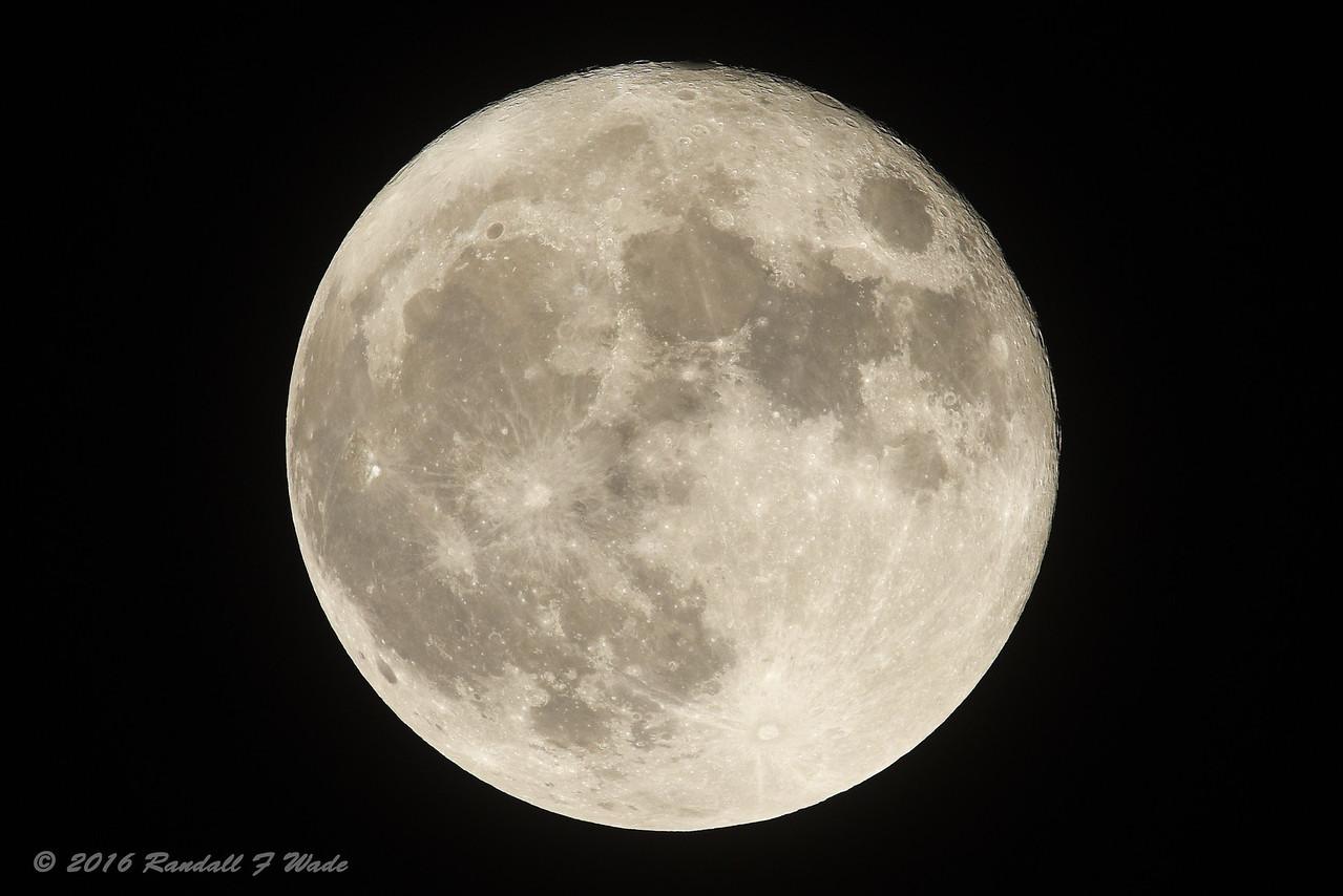Super Moon 11/14/2016