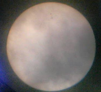 2004.05.02: Mein liebes Handy schafft sogar Sonnenflecken zu fotografieren