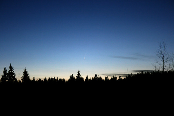 Comet McNaught, January 11th 2007.