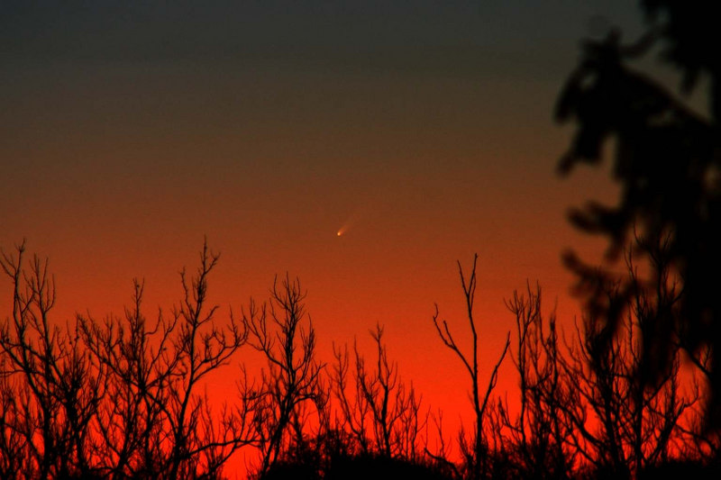 Dan McKeel of Upper St. Clair, PA took this fantastic image of Comet McNaught on the evening of Jan 8, 2007. Camera - Canon 300 D. with 300mm lens at f-5. Exposure was 1/6 sec. ISO 800.  (Click on the above image to enlarge.)