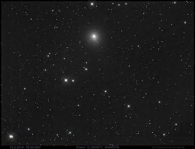 Comet C/2018Y1 (Iwamoto)