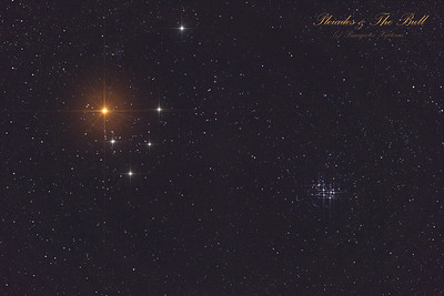 Pleiades and the Bull