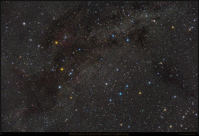 Lacerta and Cepheus