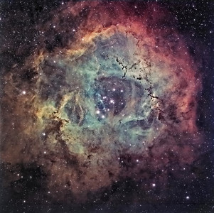 Rosette Nebula - NCG 2239.   Instrument: Takahashi 106 Fsq f/5 on Gemini G41+ ccd Kai4021 Exposures: Ha 8x30' (1x1), OIII 8x5' (2x2), SII 7x8.5' (2x2), Astronomics filters (Ha 13 nm).  Date: march 2008
