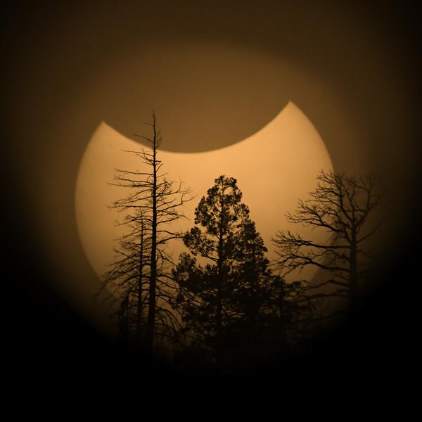 Elden Ridge Eclipse II