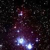 The Christmas Tree Cluster (with Cone Nebula at top)