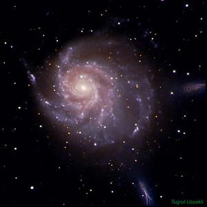 M101 Pinwheel ( Fırıldak) Galaxy  LRGB 40/24/24/24 Total : 112 min