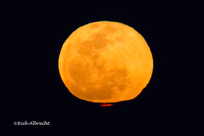 Lunar Red Flash: The same atmospheric optics that creates Green and Red Flashes of the sun's image can do similar distortions of the Moon.  This is a rather large Red Flash considering the bottom edge of the Moon was almost a degree above the horizon.  Taken from Sanibel Island Florida.