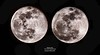 11VG0016-Moon Stereo:  In the previous image the moon is shown at a different scale due to the elliptical nature of its orbit.  The moon also wobbles a little from side to side even though the moon keeps roughly the same side toward us here on earth.  In this case I captured images of the moon close to the extremes of this wobble which can be used to create a stereo pair base on the different viewing angles.  Adjust the size of this image (change window size) until the two moon images are about as far apart as your eyes are.  Then view the left image with your left eye and the right image with your right eye.  It may be a challenge to fuse the two images into one stereo image, but some people are able to train their eyes to view this image in stereo.  (The image on the right was rescaled to match the size of the image on the left so you can see both images in stereo.)