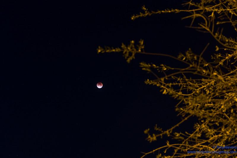 IMAGE: https://photos.smugmug.com/Astronomy/Lunareclipse-Jan-31-2018/i-LGnZ5Pt/0/f9c15e55/L/L1003082-L.jpg