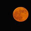November Full Moon 2012