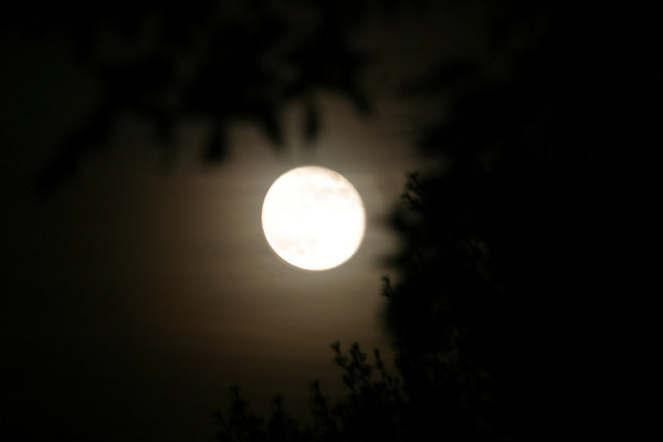 Moon from Hidden Valley 20061106