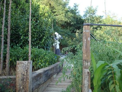 Gözlemevi ulaşım yolu. İleride sabit ayak, kundak ve teleskop görünüyor.  Solda ve sağda tarlalarda domates, biber, kabak, patlıcan ve diğer hertürlü şey mevcut :-)  2009