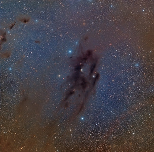 Barnard 22 and IC 2087