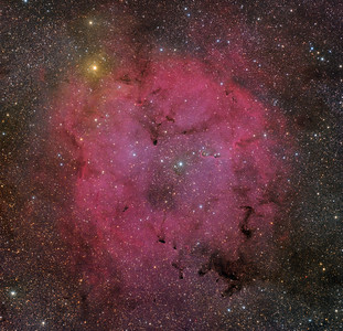 IC 1396 and the Garnet Star