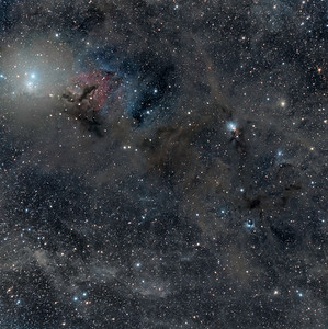 On the Heels of Perseus; NGC 1333 and IC348