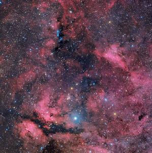 Sadr aka Gamma Cygni, The Butterfly and NGC 6914