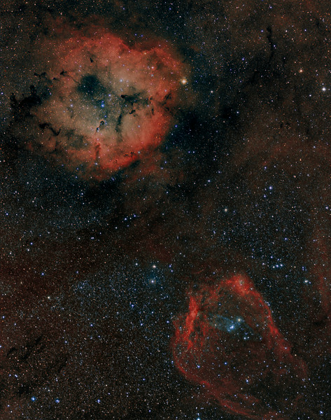 "An elephant, a bat and a squid walked into a bar... Here we have the newly discovered ( by an amateur astronomer) ""squid"", now known as OU4, a fragile blue OIII image enbedded in the red ""bat"" (Sh2-129) at the lower right.  The elephant of course is above in IC1396.<br /> The ""squid"" was  discovered in May 2011 by Nicolas Outters and although not fully understood appears to be a giant, dim, planetary nebula.<br /> Astronomy Magazine, Picture of the Day, July 28,2014<br /> This image was shot with a Canon 135mm f2 lens at f2.5 and a FLI ML8300 camera with Baader filters.<br /> The image was taken by Lynn Hilborn, WhistleStop Obs, Grafton, Ontario on June 22,26,27 and July 1,2014.<br /> A total of 11 hours of exposure...OIII 8x30m, Ha 14x15m, R 6x10m, G 6x10m, B 8x10m, all binned 1x1."
