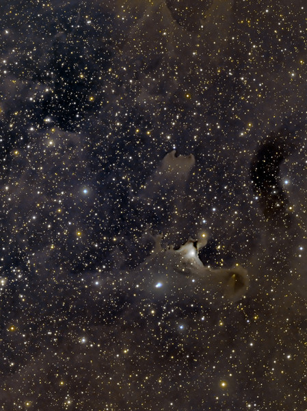 'Best in Show', 2011 Starfest Image Salon<br /> vdB 141 'Cosmic Surfers' in constellation Cepheus .  <br />  Lum 18x10m bin 1x1, RGB 12x5m each bin 2x2, taken with TEC140 and FLI ML8300 camera.<br />  Taken by Lynn Hilborn, WhistleStop Obs, Grafton Ontario on June 02 and 06, 2011.<br /> <br />   Published in Sky&Telescope Magazine, October 2011 edition