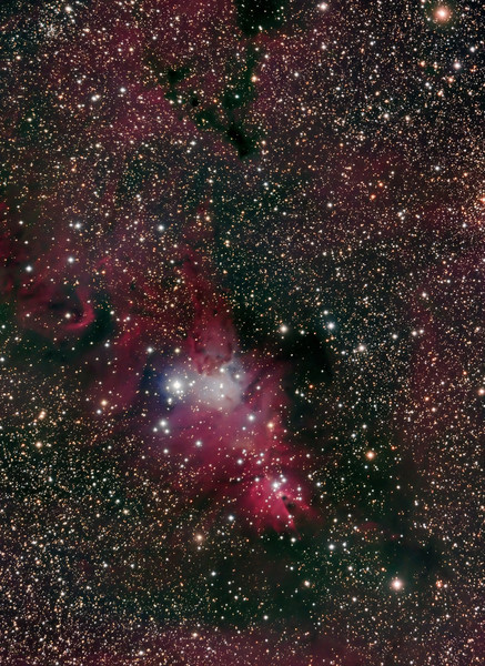 Christmas Tree Nebula<br /> Lynn Hilborn, November 2009. ML8300 and NP101is at f4.3