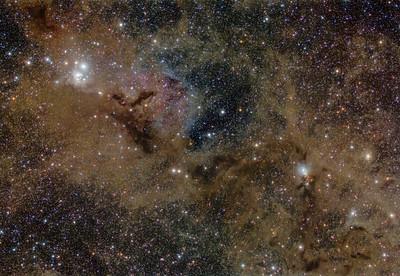 Perseus Molecular Cloud...APOD (NASA Astronomy Photo of the Day)