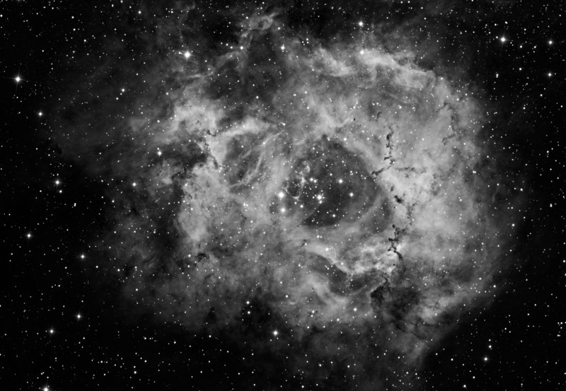 Rosette Nebula 6.5 hours of Ha taken by Lynn Hilborn, WhistleStop Observatory, Grafton, Ontario<br /> NP101is and FLI ML8300 with 7nm Baader Ha filter. November 11 and 12, 2009