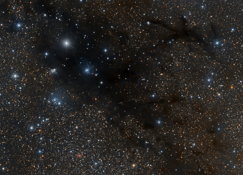 Dark Nebula LDN988, 11 hour exposure taken with TEC 140 @f7 and FLI ML8300 camera.<br /> RGB each 2 hours (12x10m bin 1x1), Lum 5 hours (30x10m bin 1x1).<br /> Taken by Lynn Hilborn, WhistleStop Obs, Grafton, Ontario on August 24,25 and September 6, 2012