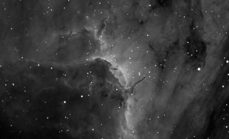 "Pelican's Neck Ha 4x30m bin 1x1 TEC 140 @f5.6 and ML8300. Taken by Lynn Hilborn August 3, 2012.<br /> The prominent ridge of emission featured in this skyscape is designated IC 5067. Part of a larger emission nebula with a distinctive shape, popularly called The Pelican Nebula, the ridge spans about 10 light-years and follows the curve of the cosmic pelican's head and neck. Fantastic, dark shapes inhabiting the view are clouds of cool gas and dust sculpted by energetic radiation from hot, massive stars. But stars are also forming within the dark shapes. In fact, twin jets emerging from the tip of the central, dark tendril are the telltale signs of an embedded protostar cataloged as Herbig-Haro 555. The Pelican Nebula itself, also known as IC 5070, is about 2,000 light-years away. To find it, look northeast of bright star Deneb in the high flying constellation Cygnus. Text from APOD.<br /> Also see similiar object in Carina nebula   <a href=""http://apod.nasa.gov/apod/ap130324.html"">http://apod.nasa.gov/apod/ap130324.html</a>"