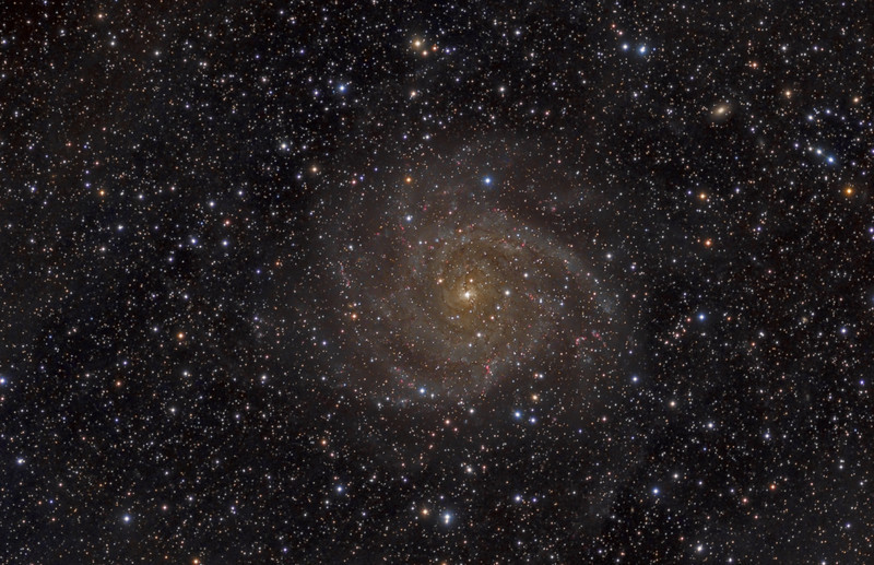 IC 342 Face on spiral galaxy in Camelopardalis. Image taken by Lynn Hilborn WhistleStop Obs, Grafton, Ontario on October 12 and 26,2012. LHaRGB ( Lum 23x15m, bin 1x1, RGB 18x5m, bin 2x2, Ha 5x15m, bin 2x2). Taken with TEC 140 @f7 and FLI ML8300 camera with Baader filters on a Tak NJP Temma2 mount.  Published in SkyNews, Jan 2013 edition.<br /> <br /> At a relatively close distance of 6.5 million light years IC342 would be one of the brightest galaxies in the sky if it weren't for its untoward location, only 10.5 degrees from the galactic equator (Milky Way disc plane). Obscured by the interstellar matter of the Milky Way, its light is heavily attenuated (by 2.4 magnitudes) before it reaches us and its field is cluttered with foreground Milky Way stars. IC342 is a member of the nearby IC 342/Maffei group. This loosely arranged group contains about 16 members including the two dominant members, IC 342 and Maffei 1. It represents the nearest grouping of galaxies to our local group and evidence tells of an interaction with the local group some eight billion years ago. The most luminous galaxies in the group are the giant spiral IC 342, the elliptical Maffei 1, and the intermediate spiral Maffei 2. Maffei 1 is the nearest normal giant elliptical galaxy to the local group but is also optically dim having its light extinguished 5.3 magnitudes by the Milky Way.<br /> <br /> IC 342 is an open two armed spiral and the closest galaxy to the Milky Way with a circumnuclear starburst ring. The cluster of stars near the nucleus formed in a short lived burst some 60 million years ago. Most likely the starburst was triggered by gas inflows into the central 1000 light years of the galaxy driven by the presence of a small scale bar. The newly arrived dense gas formed a central ring which triggered the starburst and now surrounds the nuclear starburst region. At least 5 prominent giant molecular clouds have been found associated with the molecular ring along with several large star forming regions. A prominent feature of IC342 is the numerous and very visible HII regions. IC 342 rivals M81 and M33 among local galaxies in the number of visible HII regions. Probably they are made more apparent by the relative extinction of the shorter wavelength light by the intervening interstellar dust of the Milky Way. Text by Robert Gendler.