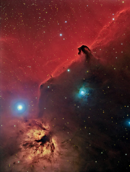 Horsehead and Flame nebula. All shot in one night, February 06,2013 RGB binned 2x2 8x5min each plus Ha binned 1x1 6x 20m. TEC 140 @ f7, ML8300 camera with baader filters and Tak NJP Temma2 mount.<br /> Taken by Lynn Hilborn, WhistleStop Obs, Grafton, Ontario. Picture featured full page SkyNews July/August 2013.<br /> The Horsehead (Barnard 33) Distance: 1500 Light Years<br /> Right Ascension: 05 : 41.6 (hours : minutes)<br /> Declination: -02 : 14 (degrees : minutes)<br /> Earthly dust may seem insignificant and trivial but the cosmic kind is an all important constituent of matter in the universe and is essential to the star making process. The famous Horsehead Nebula represents a dark cloud of dust and non-luminous gas which obscures and silhouettes the emitted light of IC 434 behind it. IC 434 has in turn received all its energy from the bright star Sigma Orionis. Protruding from its parental cloud, the horsehead is really a dynamic structure and a fascinating laboratory of complex physics. As it expands into the surrounding environment areas of the cloud sustain stresses which trigger the formation of low mass stars. One infant star is visible as a partly shrouded glow in horse's brow. Small reddish objects glowing through the dust represent Herbig-Haro objects, light emission of material ejected from invisible protostars.<br /> The surrounding region also contains a multitude of different objects all unique in their own right. The bright emission nebula in the lower left is NGC 2024 (the flame nebula). Infrared studies have revealed a huge cluster of infant stars hidden behind the dust and gas of NGC 2024. The bright blue reflection nebula to the lower left of the Horsehead is NGC 2023. Interstellar dust reveals its presence by blocking light emitted from stars or nebulae behind it. Dust is composed mostly of carbon, silicon, oxygen and some heavier elements. Even organic compounds have been detected.<br /> NGC 2023 Distance: 1530 Light Years<br /> NGC 2023 is one of the brightest reflection nebulae in the sky and is located just east of the Horsehead nebula forming a thin blister at the edge of the molecular cloud L1630. The B type star HD37903, with a surface temperature of 22,000 degrees, is responsible for most of the excitation of gas and dust within NGC 2023 and lies in front of the molecular cloud. A unique feature of NGC 2023 is the presence of a shell of neutral hydrogen (H2) surrounding HD37903 out to a radius of about 0.65 light years. The shell amazingly emits light not by photoionization of hydrogen but by a unique process called vibrational fluorescence. It is the first reflection nebula known to exhibit this type of phenomenon. In addition to the reflection component, a number of Herbig-Haro objects (HH) which are associated with pre-main-sequence stars exist in the surrounding dust clouds. Two HH objects, HH4 and HH5 in the southeastern part of the nebula are illuminated by a star designated star C. Star C is thought to be a T-Tauri star. NGC 2023 is evidently an active region of star formation.<br /> Text by Robert Gendler.