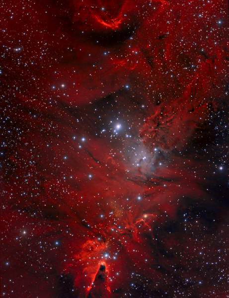 Merry Christmas Everyone, and may 2015 bring you clear skies !<br /> <br /> NGC 2264 (Christmas Tree cluster) (Cone Nebula Region) with 2.5 hours of Lum added in Feb 2014. Total now 12 hours of LRGB and Ha.<br /> Original data was HaRGB. 9.5 hours of exposure with TEC 140@f5.6 and FLI ML8300 camera. Taken by Lynn Hilborn, WhistleStop Obs, Grafton, Ontario. Imaged on Feb 19 and 20, 2012