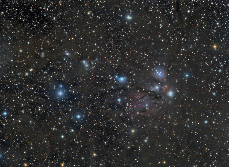 """NGC 2170 A Diaphanous beauty.<br />  Lum 13x10m bin 1x1, RGB each 5x5m bin 2x2, taken with NP101is @f4.3 and FLI ML8300 camera.<br /> Taken by Lynn Hilborn, WhistleStop Observatory, Grafton,Ontario on Jan 30 and Feb 04, 2011. <br /> ** ASTRONOMY MAGAZINE PICTURE OF THE DAY, July 4 2014.<br /> <br /> This rich collection of predominantly reflection and sparse emission nebulosity exists in the western part of a vast star forming region known as the Mon R 2 association. The """"R"""" designation stands for reflection and indicates an association of stars illuminating reflection nebulae. Most of the members of Mon R 2 are type B stars located along an east-west line stretching across 2 degrees of the winter sky, situated about 8 degrees east of the Orion Nebula. The Mon R 2 association resides at a distance of 830 pc and formed about 6 to 10 million years ago along the edge of the elliptically shaped Mon R2 molecular cloud (dimensions of about 130 x 60 pcs). In 1966 Van den Bergh first identified this major clustering of nine reflection nebulae illuminated by an association of B-type stars.<br /> The core of the molecular cloud Mon R2 is associated with both a massive bipolar energetic outflow (one of the largest known outflows) and several radio sources thought to originate from water, formaldehyde, and OH Masers. Maser is an acronym for """"Microwave Amplification by Stimulated Emission of Radiation"""". Masers form through the interaction between high-energy starlight and regions rich in various molecules. Both outflow phenomenon and maser acitivity occur in regions of very active star formation. These energetic phenomenon arise from the core of the Mon R2 cloud where a compact HII region and several dust embedded infrared sources have been identified, thought to be associated with pre-main sequence objects, presumably evolving hot B-type stars. The reflection Nebula VdB 68 shows the visible striations characteristic of older nebulae where the exciting star has begun to destroy """